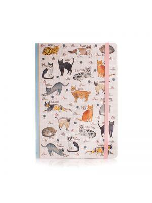 Curious Cats Notebook A5 Softbound