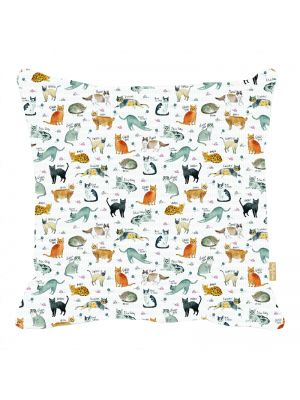 Curious Cats Cushion 40x40